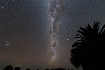 Namibia, Region Khomas, near Uhlenhorst, Astrophoto, Southern Milky Way and Small Magellanic Cloud with palm trees in foreground, soft processing - p300m1505760 by Thomas Grohmann