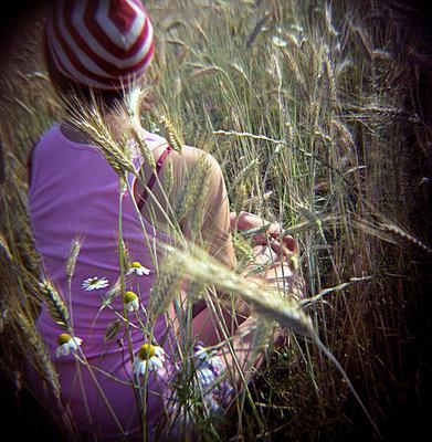 Teenage girl sitting in corn field - p4903235 by Sabine Fritsch