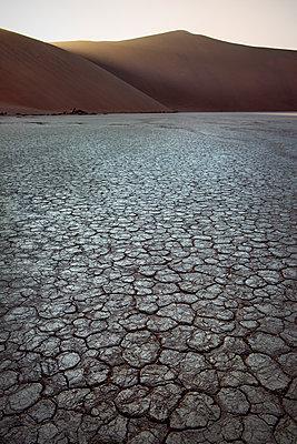 brüchige Erde im Dead Vlei, bei Sossusvlei, Namib Naukluft Park, Namibia, Namib Wüste, Afrika - p1316m1160899 von Günther Bayerl
