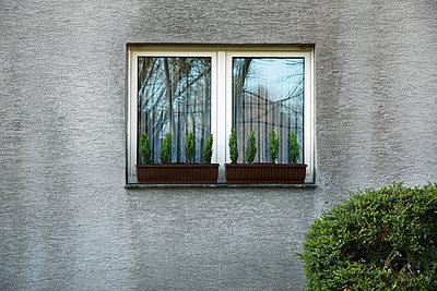 Schmutzige Fassade - p902m881362 von Mölleken