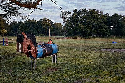 Holzpferd - p1200m1131751 von Carsten Görling