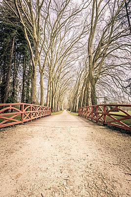 Richelieu Garden - p1402m2076942 by Jerome Paressant