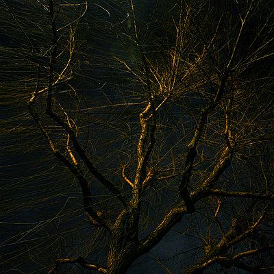 Darkness - p9111467 by Gaëtan Rossier