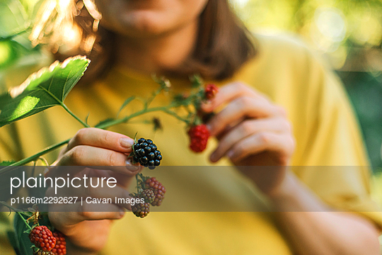 p1166m2292627 von Cavan Images
