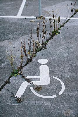 Unkraut wuchert in den Rissen eines Behindertenparkplatzes - p586m972963 von Kniel Synnatzschke