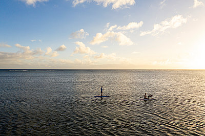 Two people and a dog paddleboarding on the ocean at sunset - p1166m2279548 by Cavan Images