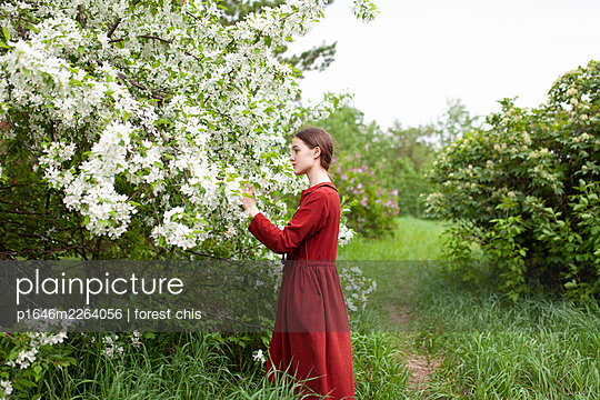 Young woman touching blossoms of a bush - p1646m2264056 by Slava Chistyakov