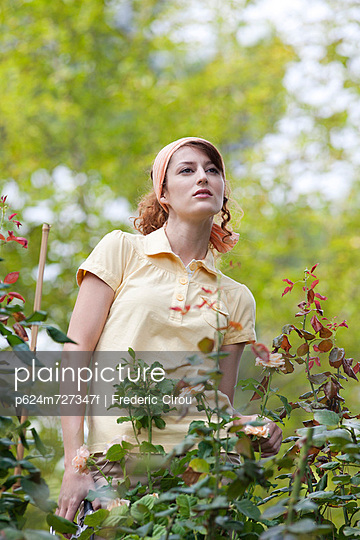 Young woman pruning roses in garden