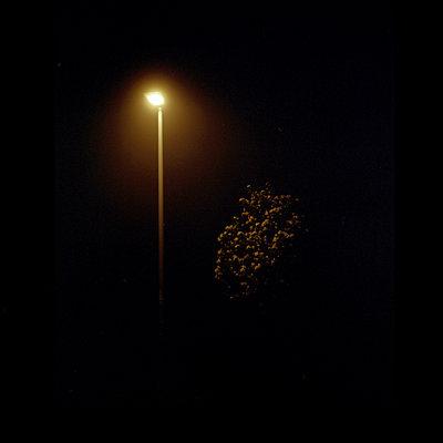 Straßenlaterne bei Nacht - p1267m1201126 von Wolf Meier