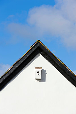 Nest box at the gable - p248m952359 by BY