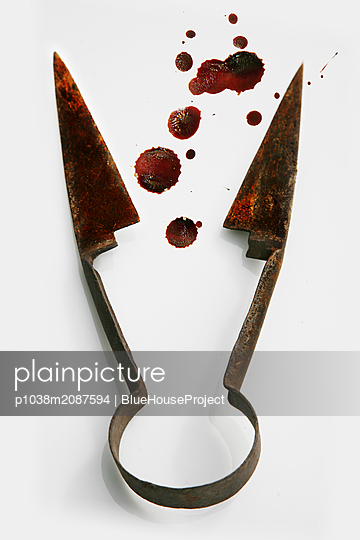 Garden shears with blood - p1038m2087594 by BlueHouseProject