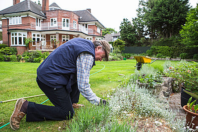 Senior man removing weeds in garden - p1026m1164177 by Patrick Frost