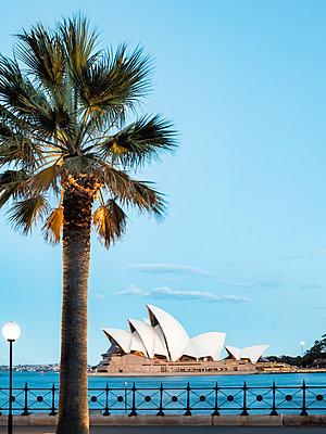 Sydney - p416m1498000 von Jörg Dickmann Photography