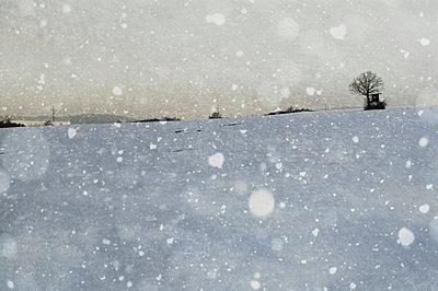 Schneesturm - p4700137 von Ingrid Michel
