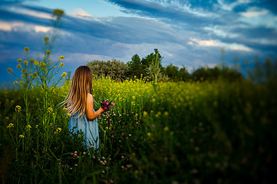 Rear view of girl picking flowers while standing amidst plants on field against cloudy sky - p1166m2024868 by Cavan Images