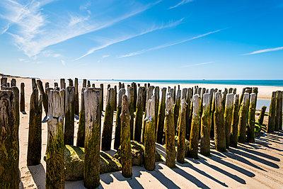 Germany, Schleswig-Holstein, Sylt, rth Sea, breakwaters - p300m1587469 by Ega Birk