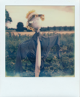 Scarecrow - p979m1118773 by Rumbach