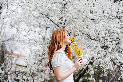 Young woman smelling yellow flower under almond tree - p300m2274015 by Eva Blanco