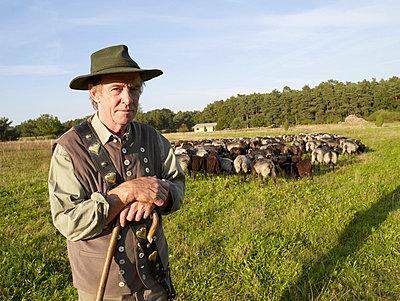Shepherd - p3460262 by Knut Schulz