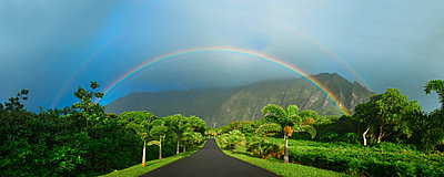 Rainbow over Hoomaluhia Botanical Garden, Kaneohe, Hawaii Islands, USA - p343m1543699 by Sean Davey