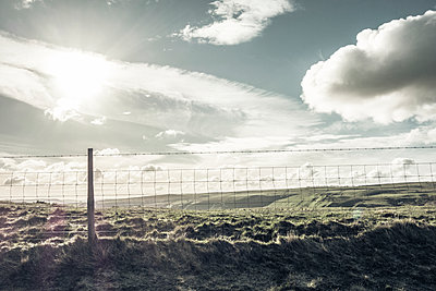 Nesh wire fence in the countryside - p586m1122323 by Kniel Synnatzschke