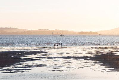 Walk along the beach, Alameda, California - p756m2295394 by Bénédicte Lassalle