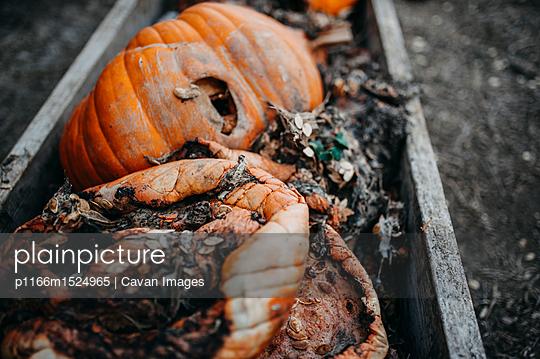 p1166m1524965 von Cavan Images