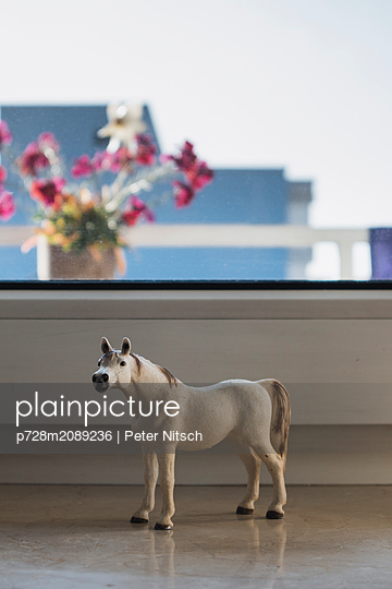 Children's toy as decoration on the windowsill - p728m2089236 by Peter Nitsch