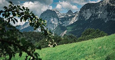 Germany, Bavaria, Berchtesgardener Land - p1569m2196134 by Moritz Metzger