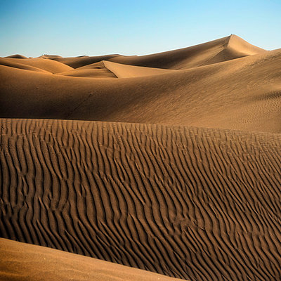 Sand dunes - p636m2021664 by François-Xavier Prévot