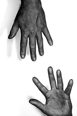 Die Hand reichen     - p450m1077655 von Hanka Steidle