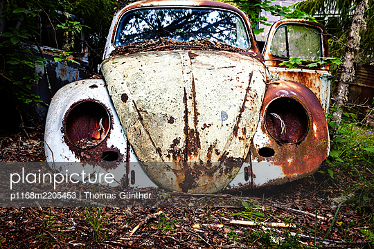 Car wreck in the woods, Sweden - p1168m2205453 by Thomas Günther