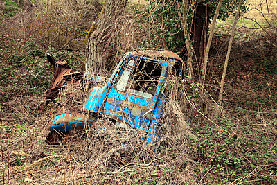 An abandoned rusting truck wreck in the woods - p2651390 by Oote Boe