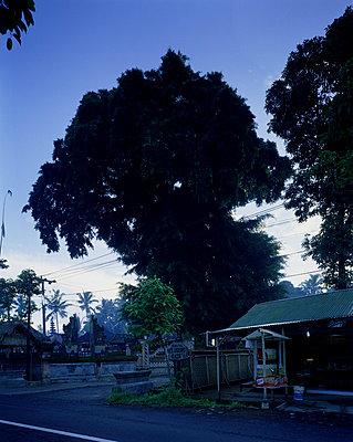 Bali - p1016m792552 von Jochen Knobloch