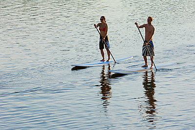 Couple stand up paddle surfing - p31227564f by Hans Berggren