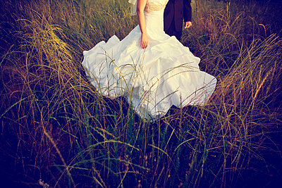 Bridal couple in the nature - p5820038 by our labor of love