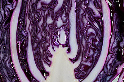 Red cabbage - p803m2270238 by Thomas Balzer
