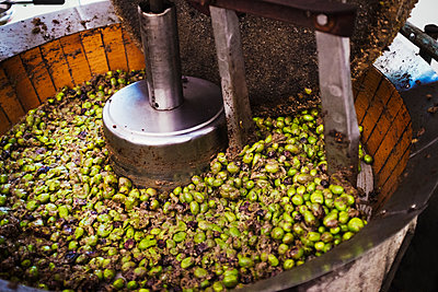 A bowl of olives in a mechanical processor to clean and crush the fruits.  - p1100m1216288 by Mint Images