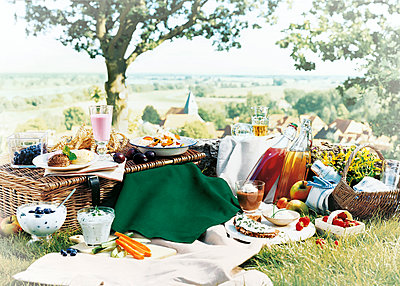 Rich picnic with wholesome dishes in the countryside - p851m2289560 by Lohfink