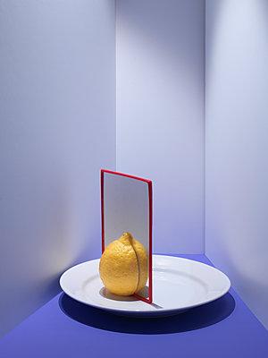 Zitrone - p1134m1516127 von Pia Grimbühler