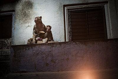 Varanasi - p1007m1060015 by Tilby Vattard