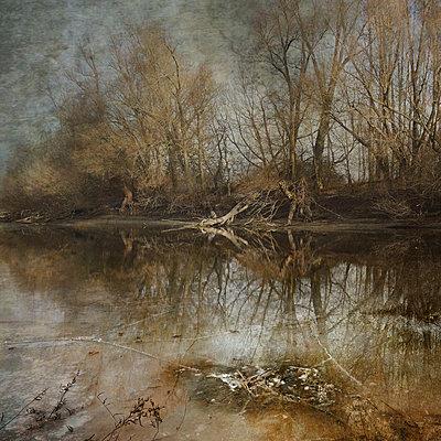 Winter's Thaw - p1633m2208842 by Bernd Webler