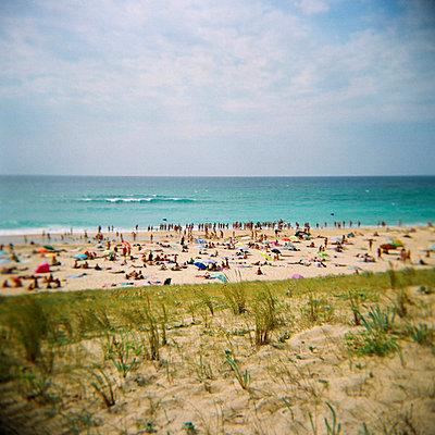 Sommerferien am Atlantik - p6000050 von Laura Stevens
