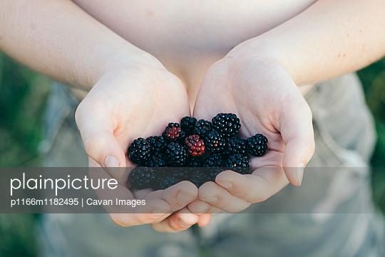 p1166m1182495 von Cavan Images