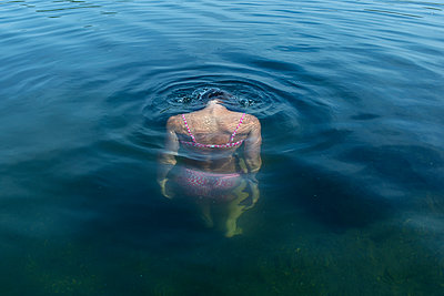 Woman diving in lake - p427m1195731 by Ralf Mohr