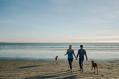 Rear view of couple holding hands while walking with dogs toward sea against sky at beach - p1166m1508263 by Cavan Images