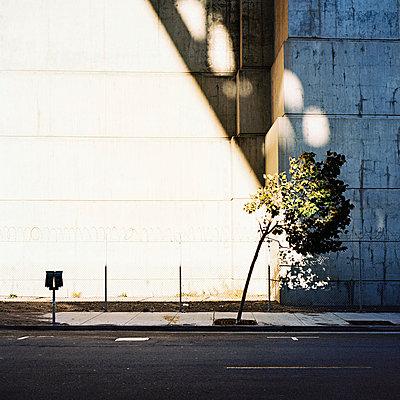 Betonwand - p1008m939792 von Valerie Schmidt