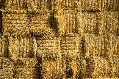 Bale of straw - p5910011 by Celine Marchbank