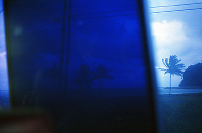 Busfenster, palme, jamaika, Karibik - p1316m1160359 von Peter von Felbert