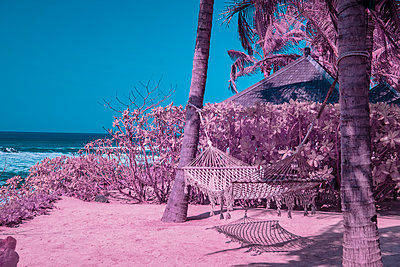 Infrared photography, Hammock on the beach - p1487m2125535 by Ludovic Mornand